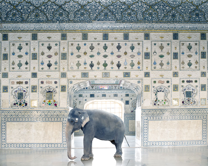 10_Photographer_Karen_Knorr_India_Song_yatzer