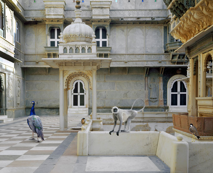 3_Photographer_Karen_Knorr_India_Song_yatzer