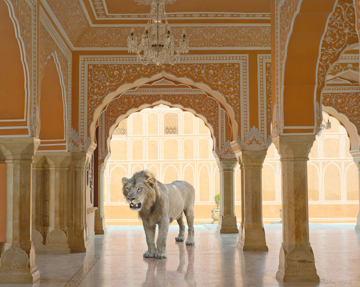 8_Photographer_Karen_Knorr_India_Song_yatzer